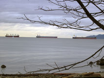 Tanker cargo ships and sailing boat on the horizon. Framed by branches Stock Photo