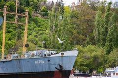 Tankfartyg för hav för troféskyttel liten Arkivbild