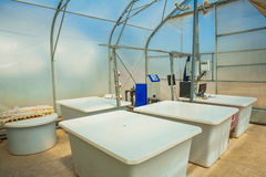 Tanks for mixing of pesticides in greenhouse Royalty Free Stock Photos