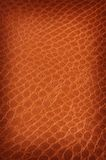 Tanned crackled leather Stock Images