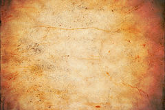 Tanned Hide Background Texture Royalty Free Stock Photography