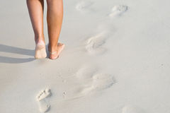 Tanned legs on the beach Stock Photography