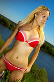 Tanned sexy woman in bikini. Fashion portrait of young beautiful tanned blonde woman in red bikini with sexy fit body posing in grass in summer time on sun Stock Photo