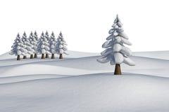 Tannenbäume auf schneebedeckter Landschaft Lizenzfreie Stockbilder