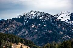 Tannenbäume und Berge in Deutschland Lizenzfreies Stockfoto