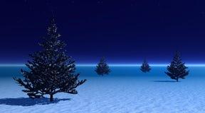 Tannenbäume unter Nebel bis zum Abend Lizenzfreies Stockfoto