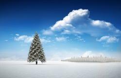 Tannenbaum in der schneebedeckten Landschaft Stockfoto