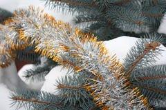 Tannenbaum mit Dekoration Stockbilder