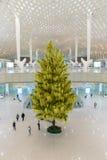 Tannenbaum in Shenzhen-Flughafen Lizenzfreies Stockbild