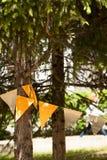 Tannenbaumaste in einem Park verziert mit bunter Girlande Stockbild