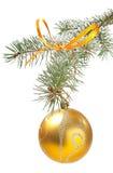 Tannenbaumzweig mit Weihnachtskugel Stockbild