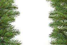 Tannenbaumzweige, Weihnachtsdekoration Stockbild