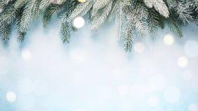 Tannenzweige auf einem blauen Hintergrund mit bokeh Lichtern stockbild