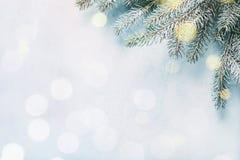 Tannenzweige auf einem blauen Hintergrund mit bokeh Lichtern lizenzfreie stockbilder