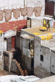 Tanner drying hides on the roof top of the Tannery in Fes Stock Photo