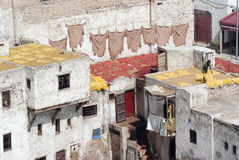 Tanner drying hides on the roof top of the Tannery in Fes Stock Image
