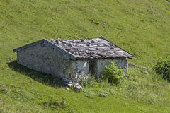 Tanneralm in Benediktenwand-Bereich Stockbild