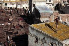 Tannerie de Fez, Maroc Images libres de droits