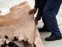 Tannerie en cuir à Fez, Maroc Images stock