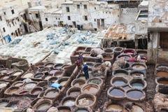 Tanneries av Fes, Marocco Royaltyfri Bild