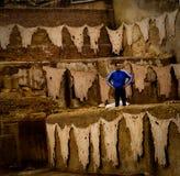 Tanneries em Fez Fotografia de Stock Royalty Free