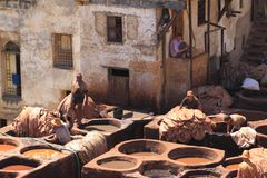 Tanneries in Fes Royalty Free Stock Images