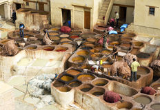 Tanneries of Fes, Morocco, Africa Royalty Free Stock Photos