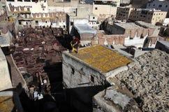 Tannery av Fez, Marocko Royaltyfri Bild