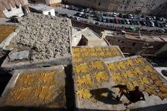 Tannery av Fez, Marocko Royaltyfria Bilder