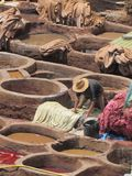 Tannery em Fez Marrocos imagem de stock royalty free