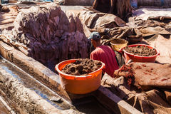 At a tannery in the famous souks of Marrakesh Stock Images