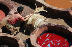 Tannery in Fes 4 Stock Images