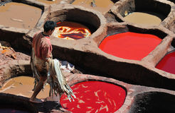 Tannery in Fes 5 Royalty Free Stock Image