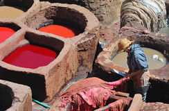 Tannery in Fes 6 Stock Images