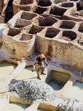Tannery in Fes, Morocco Stock Photography