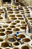 Tannery in Fez, Morocco Stock Image