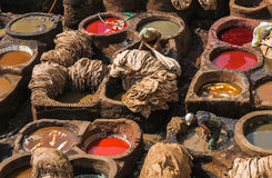 Tannery in Fez, Morocco Stock Images