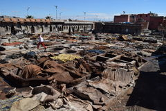 Tannery in Marrakech Stock Images