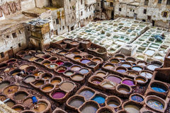 Tannery skin Stock Photography