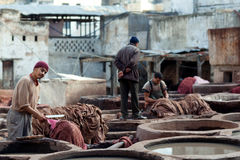 Tannery souk, Morocco Royalty Free Stock Images