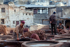 Tannery souk, Morocco Stock Image
