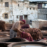 Tannery souk, Morocco Stock Photo