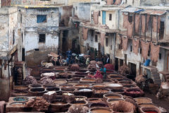 Tannery souk, Morocco Stock Images