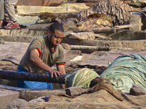 Tannery worker in Marrakech. Worker handling hides at a tannery in Marrakech, Morocco Royalty Free Stock Photos