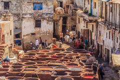 Tannery workers in Fes Morocco Stock Photos