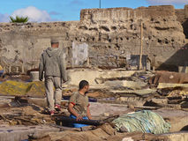 Tannery workers in Marrakech. Workers handling hides at a tannery in Marrakech, Morocco Stock Photos