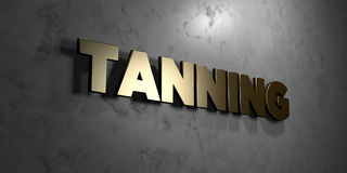 Tanning - Gold sign mounted on glossy marble wall  - 3D rendered royalty free stock illustration Stock Image