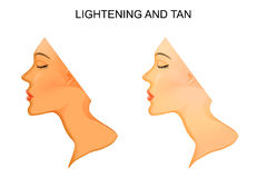 Tanning and skin lightening. Illustration of the skin. Tanning and skin lightening Royalty Free Stock Images