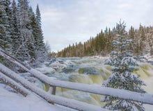 Tannoforsen瀑布在瑞典在冬天 库存照片