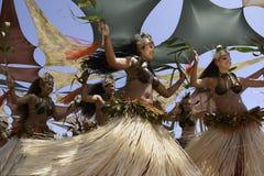 Tanowie Południowe Pacyficzne wyspy Zdjęcia Royalty Free
